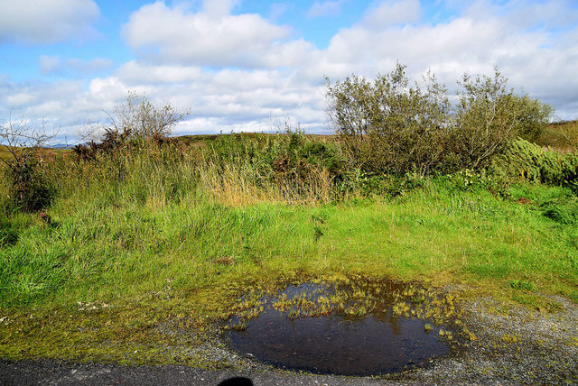 Puddle, Loughmacrory