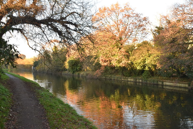 Grand Union Canal by N Chadwick