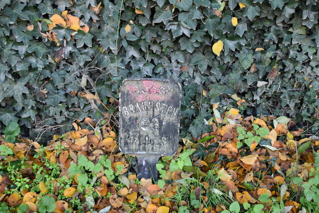 Milepost by Grand Union Canal by N Chadwick