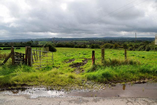 Wet along Shinnagh Road