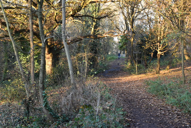 Footpath to Boston Manor by N Chadwick