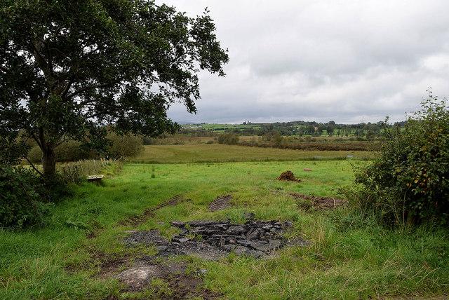 An open field, Mullaghslin Glebe
