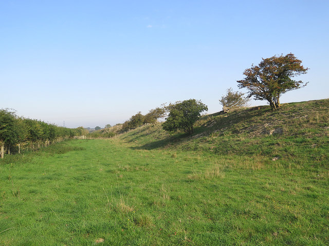 In the Devil's Dyke ditch