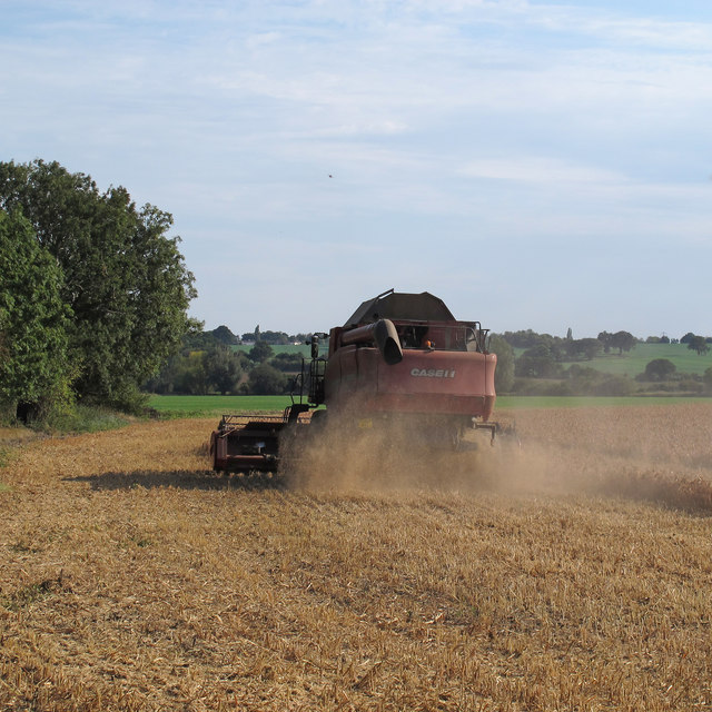 Combine Harvester at work, Stanford Rivers