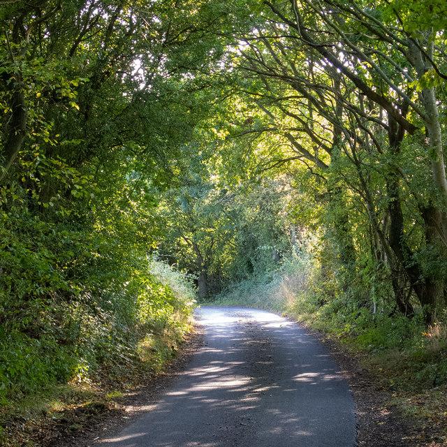 Mill Lane, Navestock