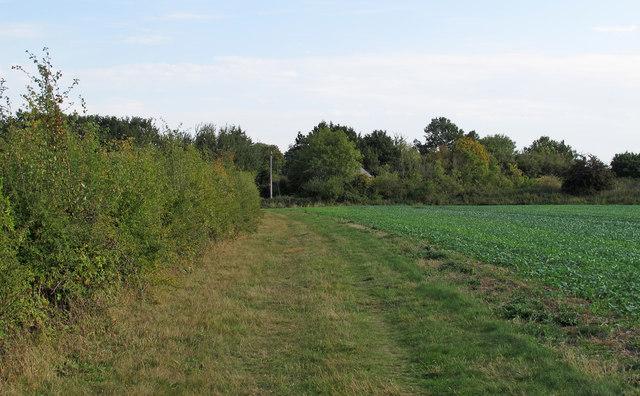 Footpath on field margin, near Church Road, Navestock