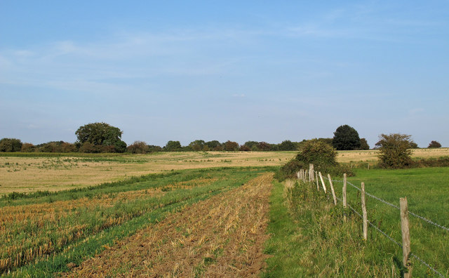 Arable land near Navestock Hall Farm