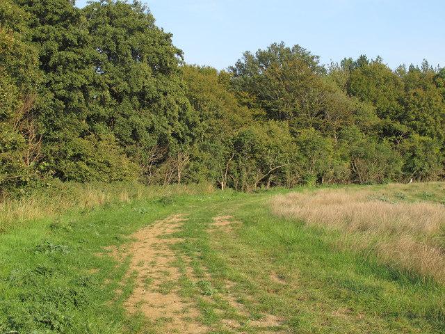 Path to Gipsy Bottom, Navestock
