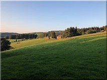 SJ9570 : View across pasture to Hallycombs Farm by Philip Cornwall