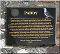 D2818 : Memorial to Paddy by Gerald England