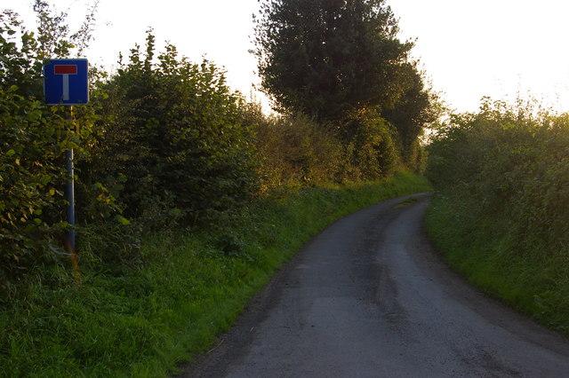 Lane to Frankton Farm