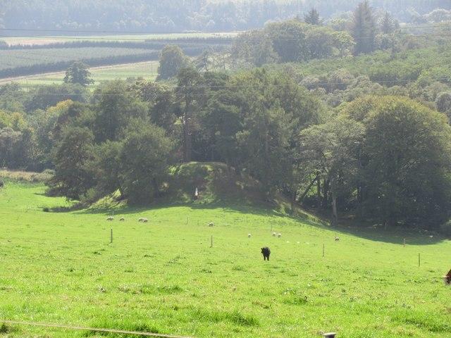 Knoll on Thainstone ground