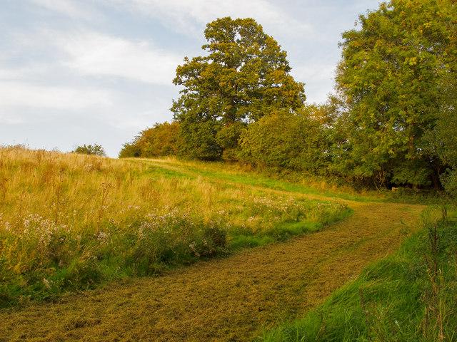 Track on field margin, Beacon Hill, Navestock