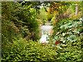 SJ7387 : Moat at Dunham Massey Garden by David Dixon