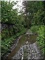 SD5597 : Lane at Shaw End, Patton Bridge by Rich Tea