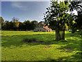 SJ7487 : Deer Barn, Dunham Massey Park by David Dixon