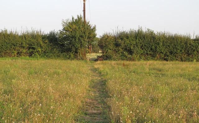 Footpath through field, near Stocks Lane, Kelvedon Hatch