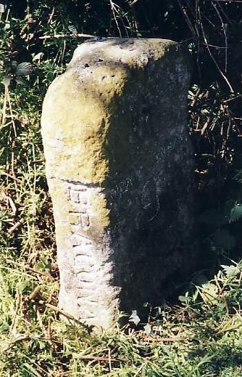 Old Milestone (north face) by the B1113, Bracon Ash, near Mulbarton