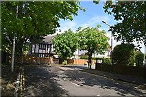 TQ5841 : Chestnut Avenue by N Chadwick