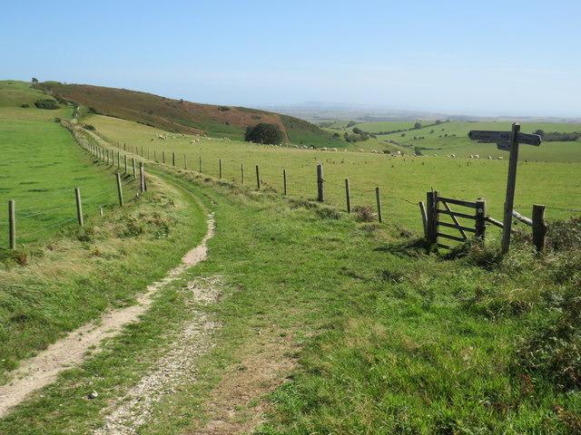 South Dorset Ridgeway near Dorchester