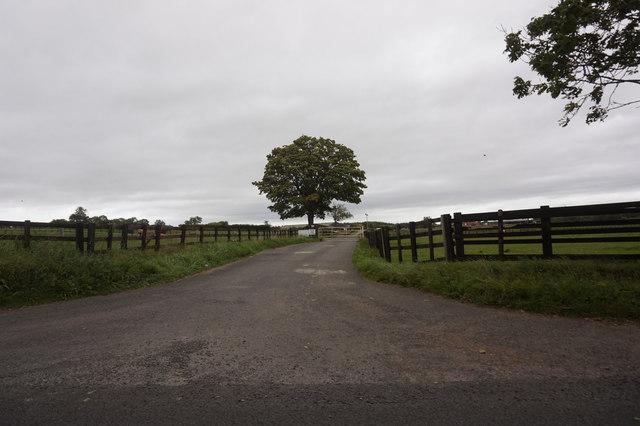 Entrance to Lea Close Farm