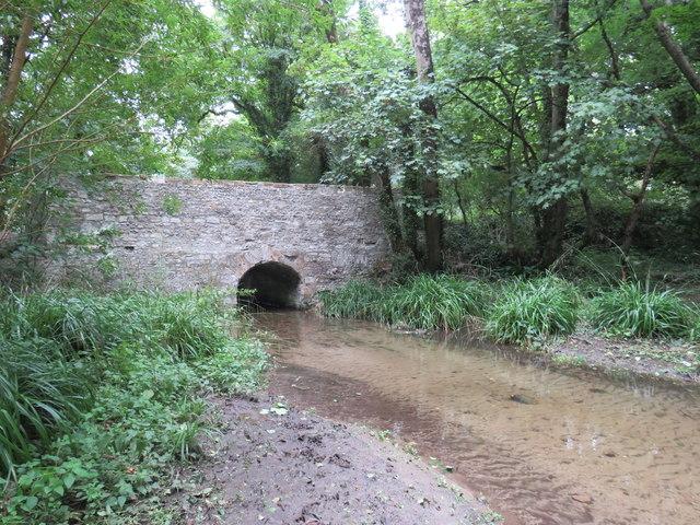 River Cerne at Cerne Abbas