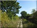 TQ4437 : Enclosed footpath to Great Cansiron Farm by Marathon