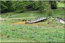 TQ5940 : Wetland boardwalk by N Chadwick
