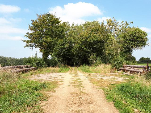 Shallowbrooks Lane
