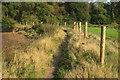 SX8972 : Templer Way near Netherton Point by Derek Harper