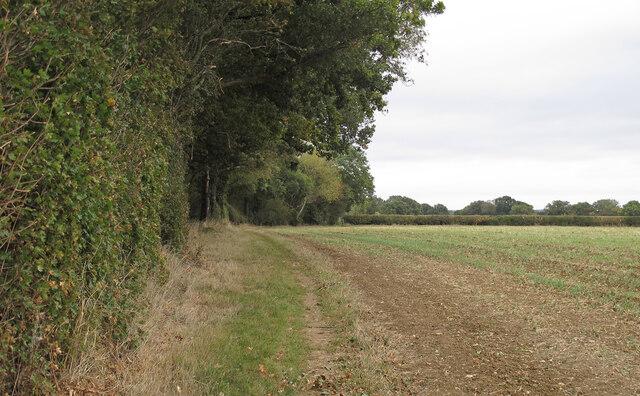 Footpath on field boundary, Doddinghurst