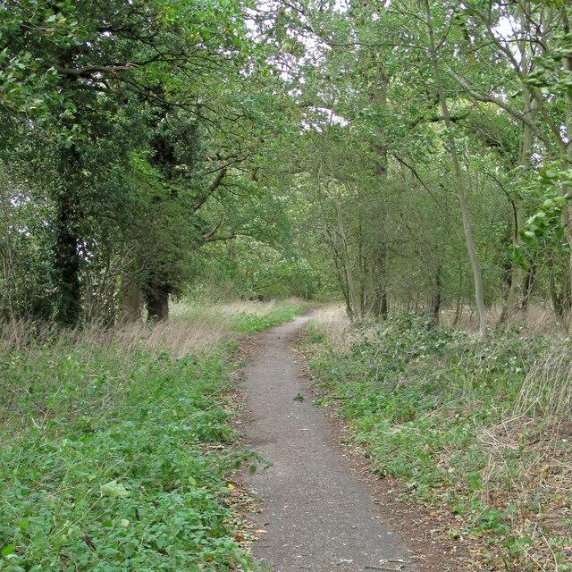 Byway (School Road), Stondon Massey