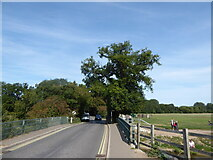 TM0533 : Constable, that's a Gainsborough: Dedham Bridge by Basher Eyre
