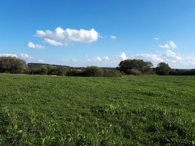 Farmland near the River Cole