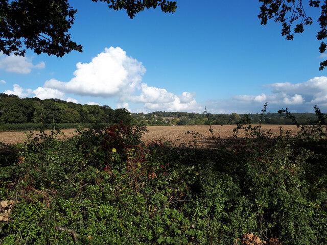Farmland near Raglan's Wood