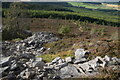 NJ6623 : Rubble from the former Little Oxen Craig quarry by Bill Harrison