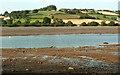 SX8872 : Across the Teign estuary #4 by Derek Harper