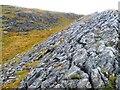 NC3867 : Limestone Pavement (near Loch Borralie) by Uamhair