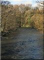 SS8979 : The River Ogmore by Newbridge Fields by eswales