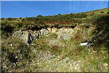 NX1894 : Quarry at Brochneil by Anne Burgess