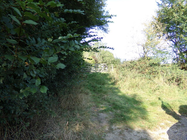 Field Entrance off Nedging Road