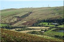 NX1894 : Caldron Glen by Anne Burgess
