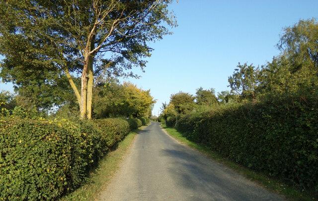 Nedging Road, Nedging