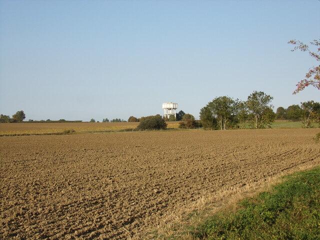 Farmland off Nedging Road