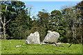 SD5074 : Split boulder by Andy Waddington