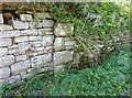NY1750 : Stone quoins in roadside wall by Adrian Taylor