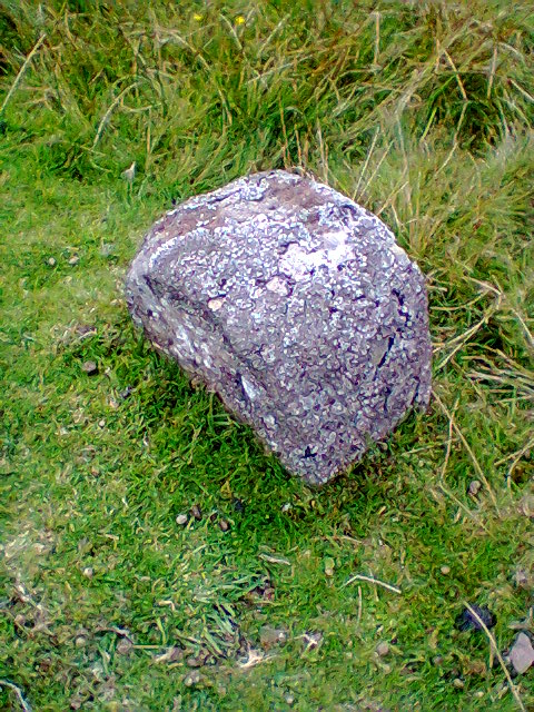 Old Boundary Marker by disused railway, north of Stanhope