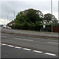ST3090 : Recently reactivated Malpas Road bus stop, Newport by Jaggery