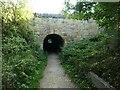SK3523 : Northern portal, tramway tunnel, Ticknall by Christine Johnstone