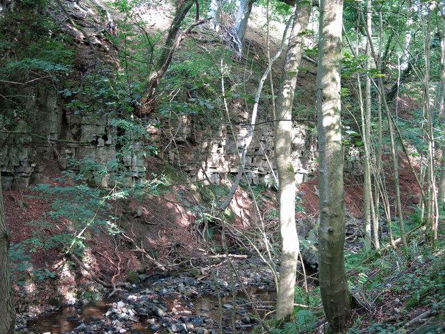 Cliffs by Shittlehope Burn